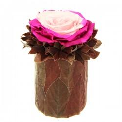 Rose stabilisée Pink flower