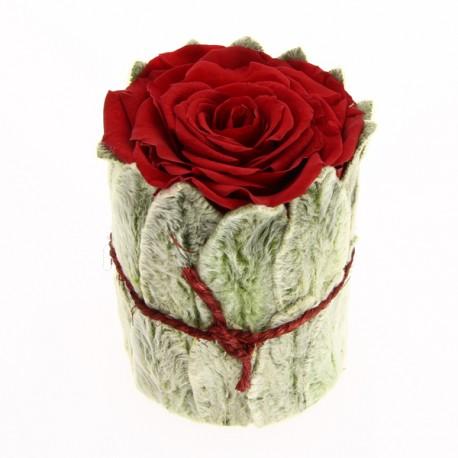 Rose stabilisée rouge