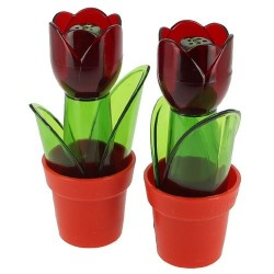 Duo salières tulipe