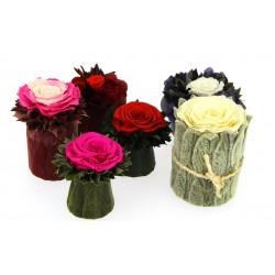 Des fleurs pour ma Maîtresse